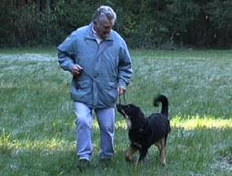 instrumentelle konditionierung hund